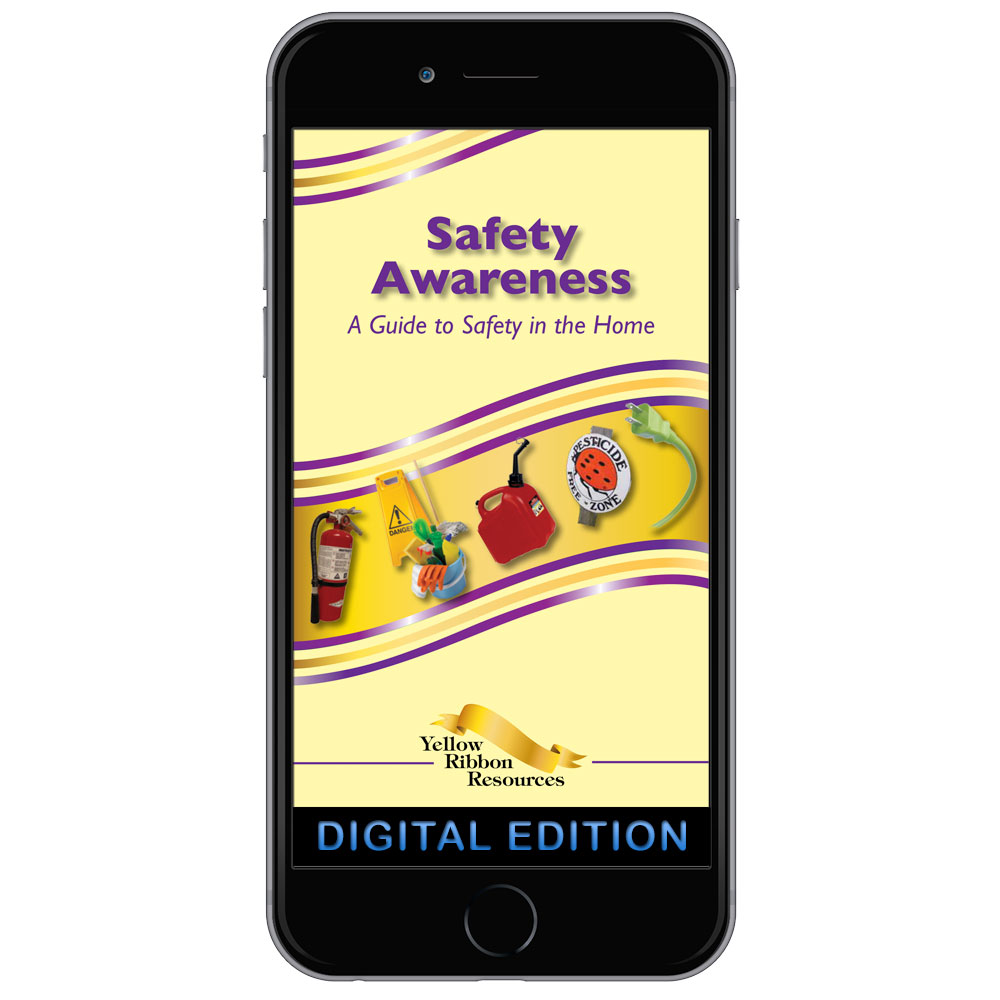 Digital Yellow Ribbon Program Booklet: Safety Awareness   A Guide to Safety in the Home