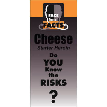 Face the Facts: (25 Pack) Cheese Drug Prevention Pamphlet