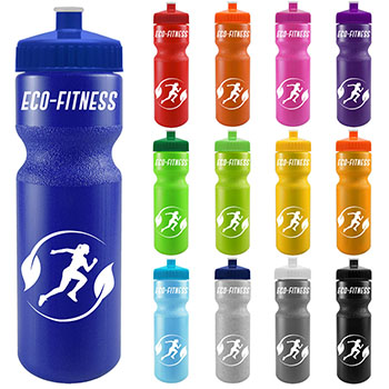 28 oz Journey Bottle with Push/Pull Lid