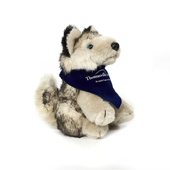 "6"" Husky with Ribbon"